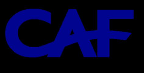 C.A.F. – Centro Amministrativo Farmacie S.r.l.